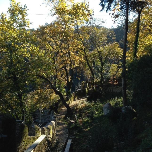 Herfst sintra