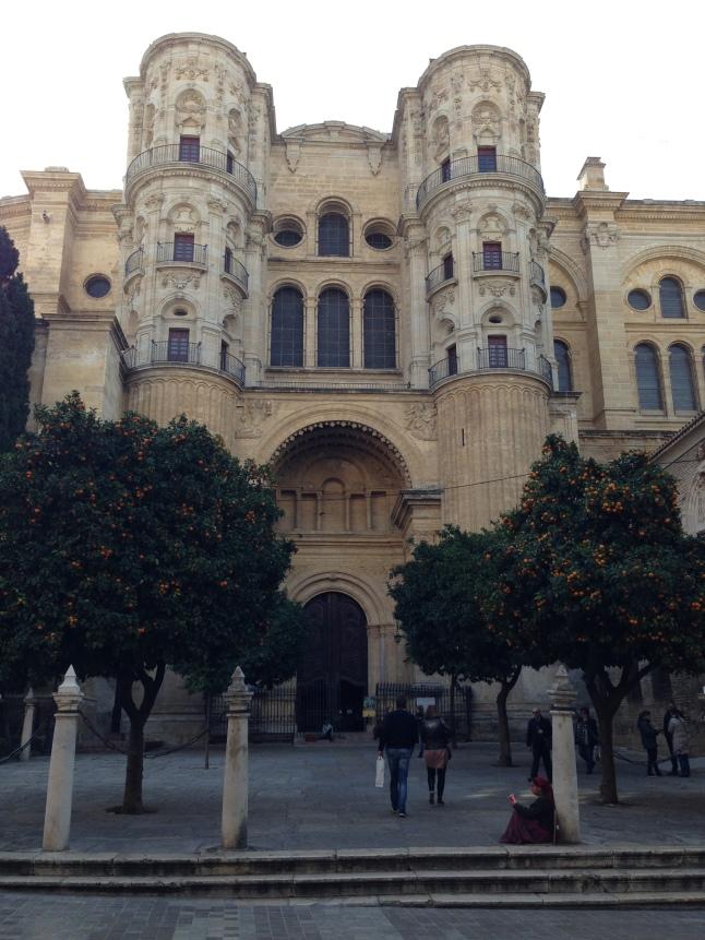 Mandrijnenbomen kathedraal malaga