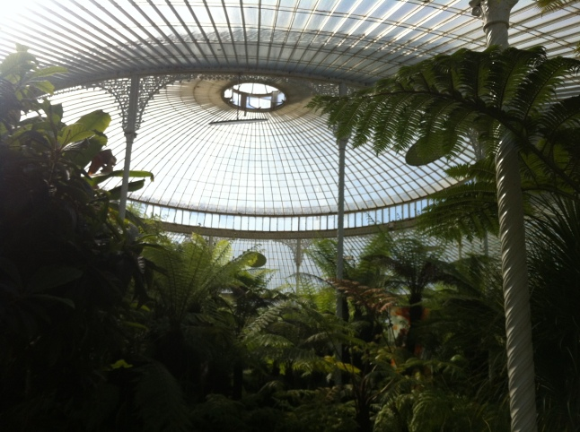 Kibble Palace: ontdek tropische en andere planten vanuit elk continent
