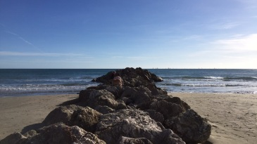 montpellier-zee
