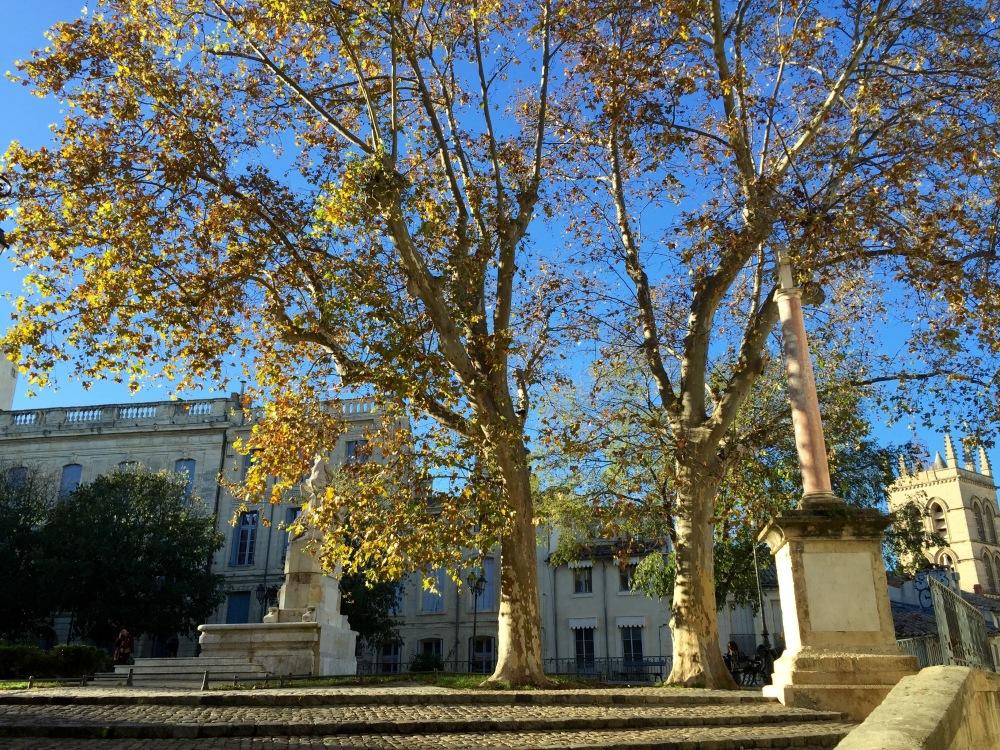 3CMGM-Montpellier