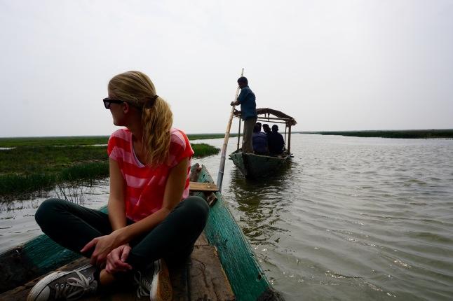 3CMGM-wetlands-india