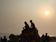 Puri-3CMGM-India