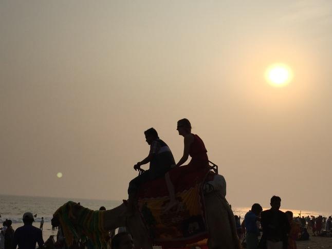 3CMGM-Camel-Ride