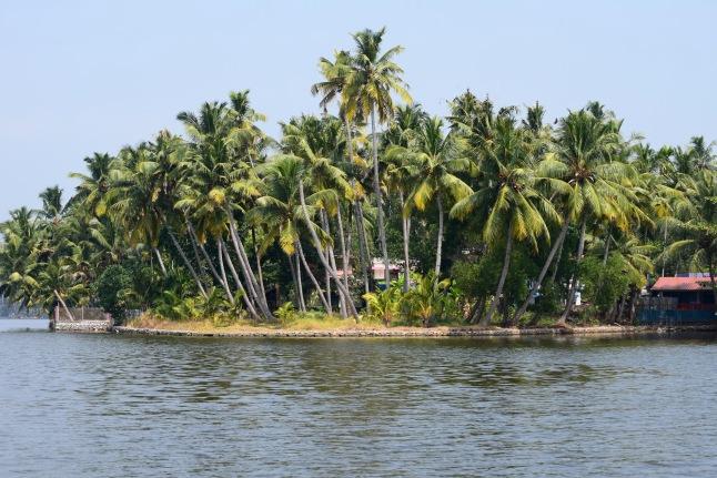 kerala-kollam-backwaters