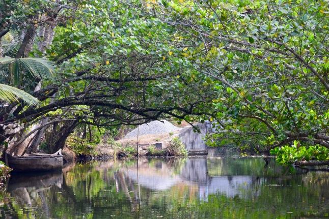 kerala-backwaters-india