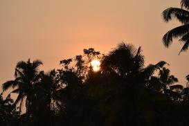 Kerala-sunset