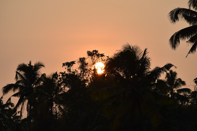Kerala-sunset
