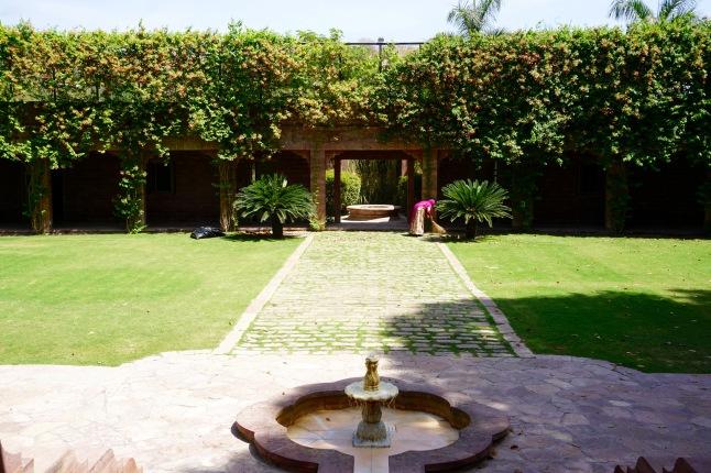 Balsamand-Lake-Palace-Jodhpur-Rajasthan