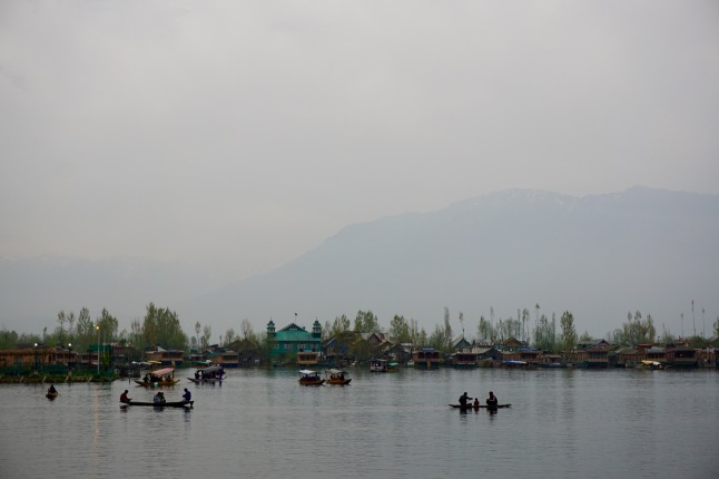 dal-lake-srinagar-kashmir-india
