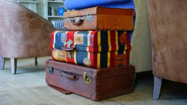 onmisbaar-handbagage-trolley