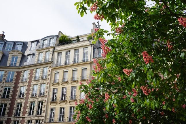 place dauphine parijs