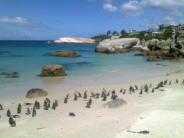 zuid-afrika south africa